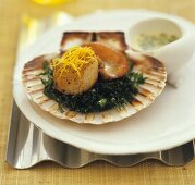 Grilled scallop with cabbage and lemon sauce