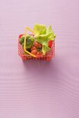 Tomatoes and lettuce leaves in toy shopping basket