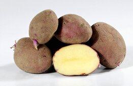 Kartoffeln (Sorte Red Duke of York) mit Trieben, ganz und halbiert