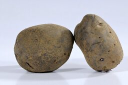 Two potatoes (variety 'Blue Congo')