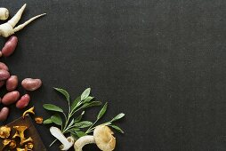 Still life with mushrooms, herbs and root vegetables