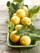 Lemons with leaves in a bowl