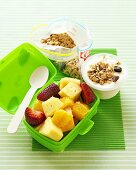 Fruit salad in lunch box, yoghurt with muesli