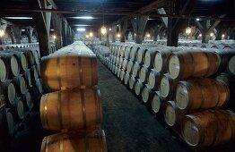 Historic cellar, Viña Santa Rita Estate, Santiago, Chile
