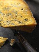 Shropshire Blue cheese (England)