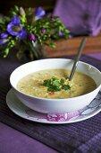 Lentil and coconut soup