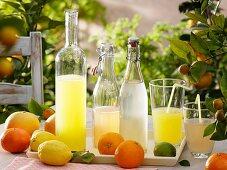 Lemonade and fresh citrus fruit