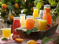Various citrus fruit juices