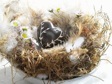 Brown heart in bird's nest