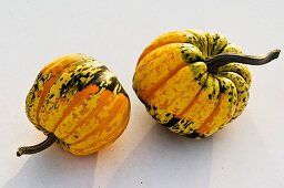 Two small squashes (variety 'Chameleon')