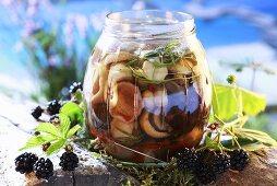 Pickled forest mushrooms in screw-top jar