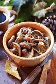 Cooked tawny milkcaps in ceramic bowl