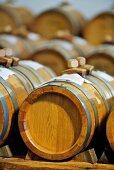Balsamic vinegar maturing in wooden barrels