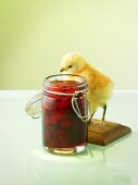 Strawberry jam, chick beside jar