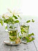Still life with lemon balm tea, lemon balm and sugar