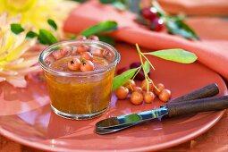 Sea buckthorn jam in small jar