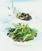 Kerbelspitzen-Salat mit Oliven