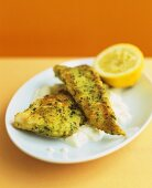 Fried fish in herb coating on cauliflower puree