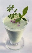Herb kefir