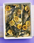 Sea bream fillets with lemon and herbs