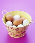 Eggs in a pail