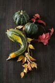Ornamental gourds with autumn leaves on black background