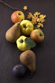 Apples, pears, quinces and fig