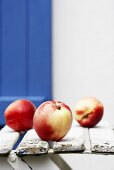 Three nectarines on wooden chair