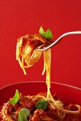 Spaghetti with tuna and tomato sauce