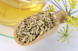 Fennel seeds and fennel tea