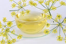 Fennel tea in glass cup and saucer, fennel flowers