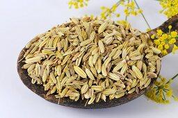 Fennel seeds on wooden spoon