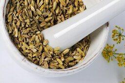 Fennel seeds in mortar
