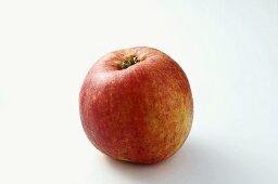 'Ruhm von Kirchwerder' apple
