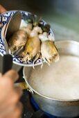 Putting squid into pan of coconut milk (Thailand)