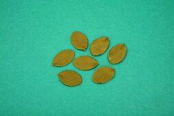 Fondant icing leaves