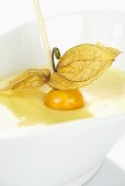 Physalis on wooden cocktail stick in white chocolate sauce