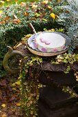 Cake decorated with macarons in autumnal garden (France)