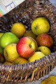 Various types of apples in basket