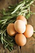 Fresh eggs and rosemary