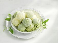 Various sorts of herb ice creams and sorbets