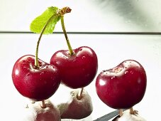 Fresh cherries with stalks and leaf