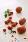 Tomatoes of various sizes