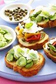 Bruschettas with various vegetarian toppings