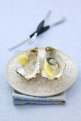 Two oysters with lemon on ice