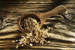Aniseed in wooden spoon on wooden board