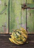 Ornamental gourd (variety: Kronenmischung)
