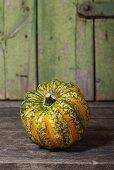 Pumpkin Gorgonzola