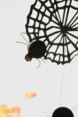 Cobweb and spider decoration for Halloween