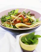 Thai salad with chicken and mint leaves